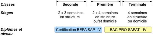 Stages du Bac Pro SAPAT
